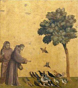 st-francis-birds
